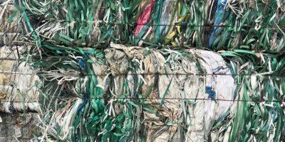 Polyester Şerit